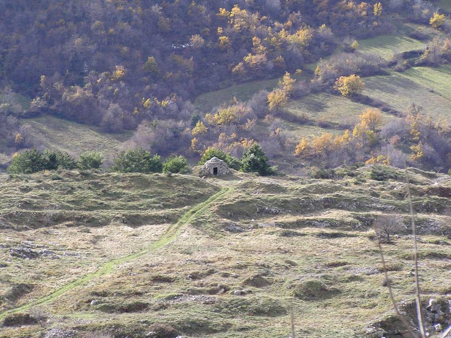 yurt11